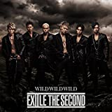 WILD WILD WILD♪EXILE THE SECOND
