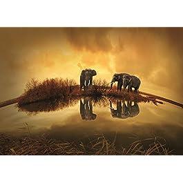 Pictuland - Cuadro Impreso en Alta Resolucion directamente en fibra de madera reciclada, Foto Africa Elefantes, Medidas: 30cm x 21cm, acabado: Brillo