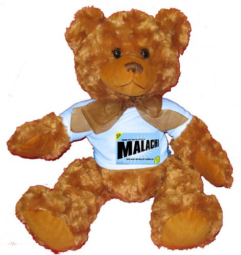 51DuNOmf5IL Reviews FROM THE LOINS OF MY MOTHER COMES MALACHI Plush Teddy Bear with BLUE T Shirt