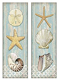 Spa Shells Vertical; 2- 8x20\
