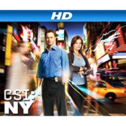 CSI: NY, Season 08 [HD]
