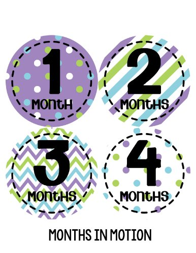 Months in Motion 274 Baby Month Stickers for Newborn Girl Purple Colorful Design