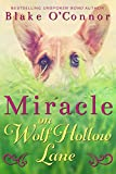 Download Miracle on Wolf Hollow Lane