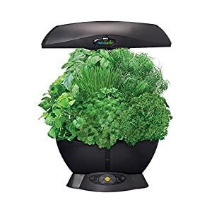 Miracle-Gro AeroGarden 6-Pod Indoor Garden with Gourmet Herb Seed Kit, Black