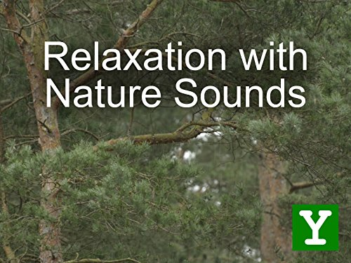 Relaxation with Nature Sounds - Y