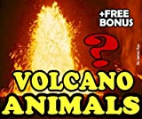 Deep Sea Volcano Burning Water Animals: A Kids Learn to Read Book with Amazing Facts and Large Photos (Free Bonus: 30+ Free Online Kids Jigsaw Puzzle Games!)