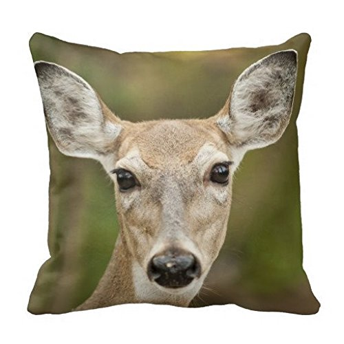 White Tailed Deer Throw Pillow Case
