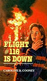flight #116 is down , caroline b. cooney essay Guidelines for an essay guidelines for an essay - title ebooks :  about yourself residency interview flight 116 is down caroline b cooney.