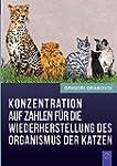 Konzentration Auf Zahlen Fur Die Wied...