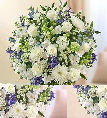 1-800-Flowers – Sincerest Sorrow – Blue and White – Medium