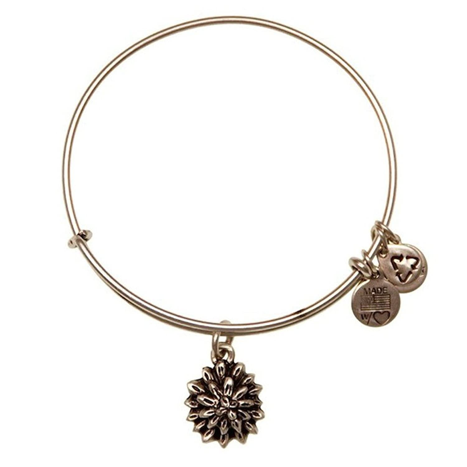 alex and ani charms meanings images