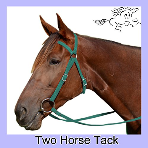 Australian Bridle & Reins Made From Beta Biothane - Warmblood Size, Hunter Green Color