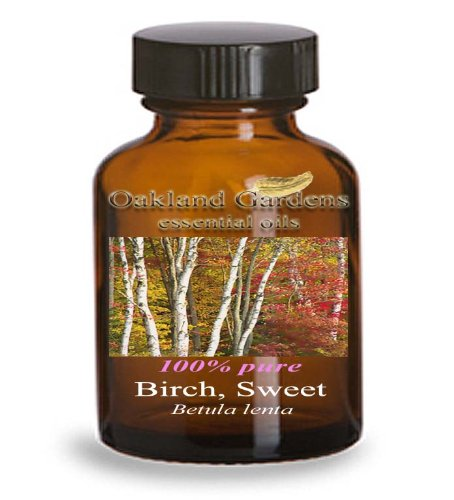 BIRCH, SWEET Essential Oil - 100% PURE Therapeutic Grade Essential Oil - Betula lenta - Essential Oil By Oakland Gardens (30 mL Dropper Bottle)