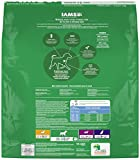 IAMS PROACTIVE HEALTH Large Breed Adult Dry Dog Food 30 Pounds