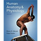 Human Anatomy & Physiology (text only) 8th (Eighth) edition by E.N. Marieb,K. N Hoehn