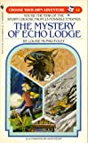 img - for The Mystery of Echo Lodge (Choose Your Own Adventure #42) book / textbook / text book