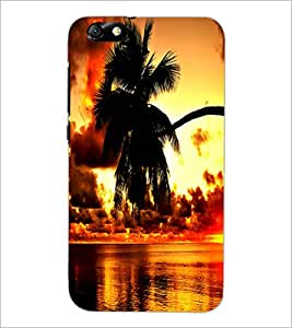 PrintDhaba Beautiful Nature D-1235 Back Case Cover for HUAWEI HONOR 4X (Multi-Coloured)
