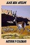 Black Mesa Antelope: Black Mesa Antelope