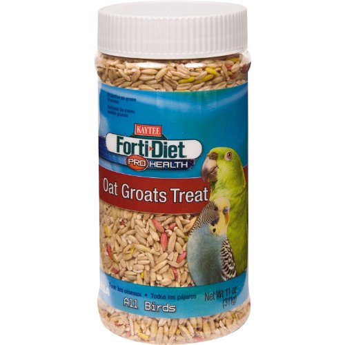 Kaytee Forti Diet Pro Health Oat Groats Treat