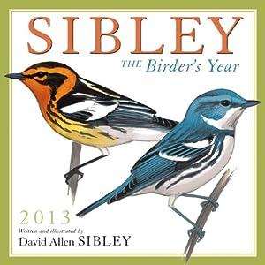 Sibley: The Birder's Year 2013 Wall (calendar) David Allen Sibley