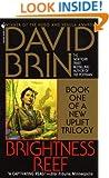 Brightness Reef (Uplift Trilogy Book 1)