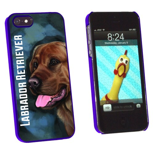 Chocolate Labrador Retriever Blue - Dog Pet - Snap On Hard Protective Case for Apple iPhone 5 5S - Blue