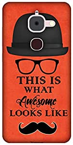 The Racoon Grip printed designer hard back mobile phone case cover for Letv Le 2. (Awesome)