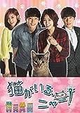 猫がいる、ニャー!  DVD BOX II -