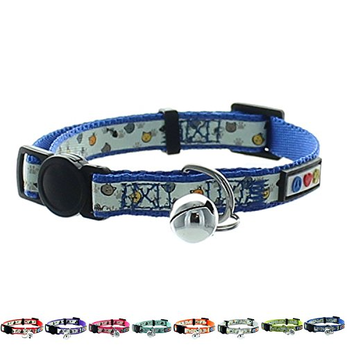 Glow In The Dark Dog Collars With Name