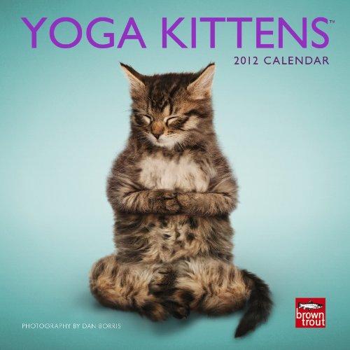 Yoga Kittens 2012 Calendar