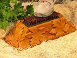 MAPLE LEAF Concrete Boot Brush BURNT ORANGE STAIN CEMENT Outdoor GARDEN 16