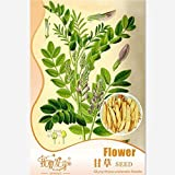 5 Pcs/bag Perennial Medical Herb Licorice Seeds, Original Package Chinese Herbal Medicine Seeds