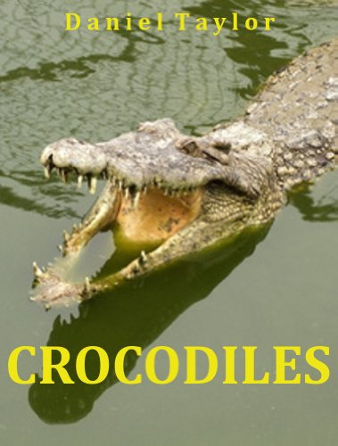 Daniel Taylor - Crocodiles: A learning adventure for young readers that wish to learn more about these patient stalkers (English Edition)