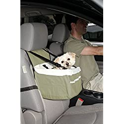 Tips On Driving With Your Dog Maltese Dog Care Blog