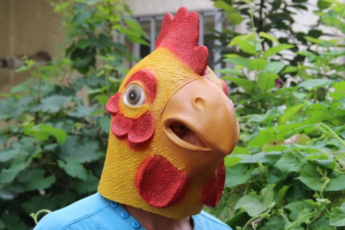 The Beauty-Way Chicken Head Mask Animal Mask