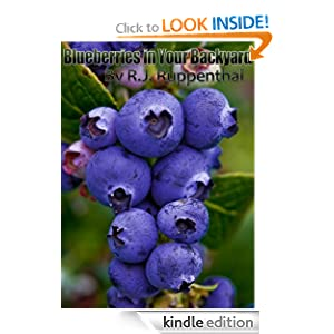 Blueberries in Your Backyard: How to Grow America's Hottest Antioxidant Fruit for Food, Health, and Extra Money (25-page Booklet)