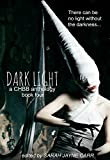 img - for Dark Light Book Four (Dark Light Series 4) book / textbook / text book