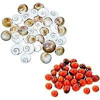 Ankita Gemstones Set Of 30 Pcs Gomti Chakra And Natural Red Gunja Red Chirmi
