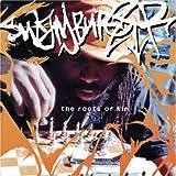 Sunvibes (all Good Funk All... - Swamburger