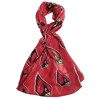 NFL Arizona Cardinals Team Logo Infinity Scarf, Red