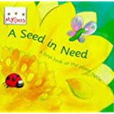 Mybees: A Seed In Need: A first look at the plant cycle: First Look at the Life Cycle of a Flower (Little Bees)