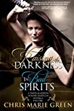 Raising the Darkness/In Bad Spirits: A Dawn Madison Vampire Babylon Novella Two-Fer