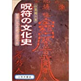 呪符の文化史―習俗に見る沖縄の精神文化