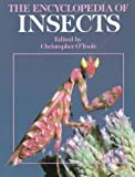 img - for The Encyclopedia of Insects book / textbook / text book