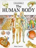 Human Body Hb (Explorer)
