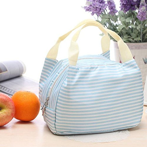 vovotradeportable-dejeuner-pique-nique-sac-fourre-tout-isole-cooler-zipper-organizer-lunchbox-215cm1