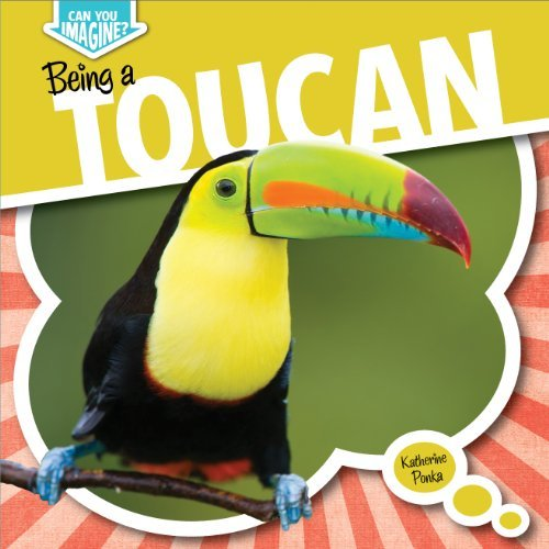 Being a Toucan (Can You Imagine?) by Katherine Ponka (2014-01-01) (You Can Toucan compare prices)
