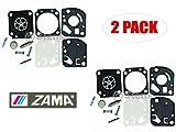 Genuine Zama RB-20 Carburetor Repair Kit for Homelite BP250 (2 Pack)