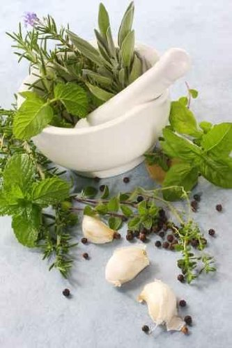 Mortar and Pestle, with Fresh Herbs - 18