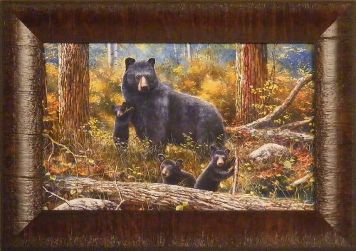 Age Of Wonder by Jim Hansel 11x15 Mama Bear Cubs Framed Art Print Wall Décor Picture (Framed Bear Art compare prices)